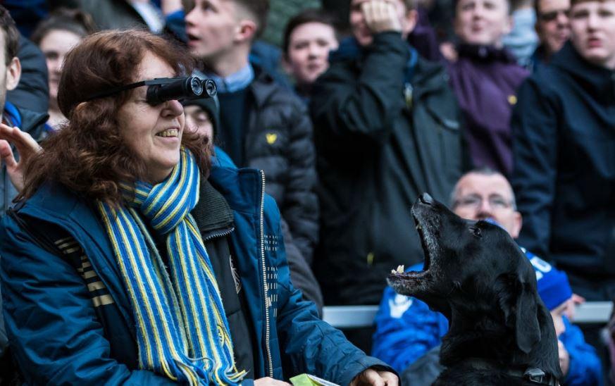 Ռիտա անունով շունը տարիներով ուղեկցում էր իր կույր տիրոջը սիրելի թիմի խաղերին. Հուզիչ պատմություն Լիդսից